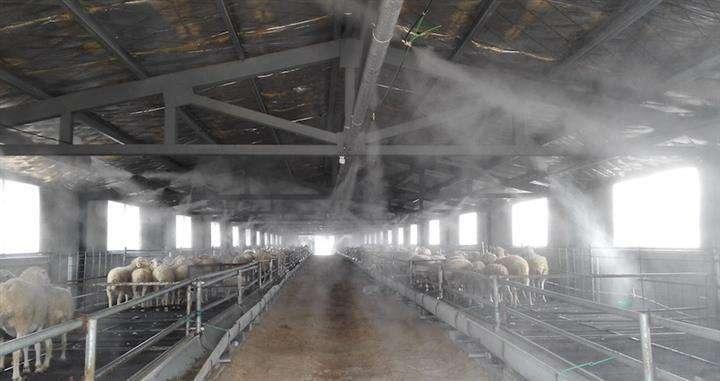 养殖场降温杀菌消毒